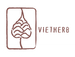 Logo Partner Vietherb